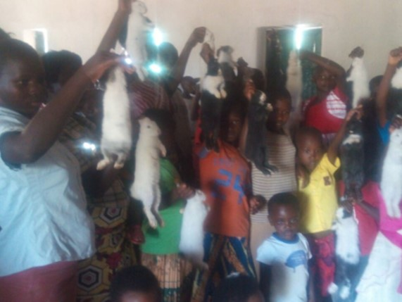 Sunday school children got rabbits for rearing from their own savings